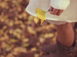 落ち葉を手にする女の子